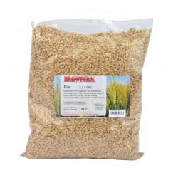 gerstemout BREWFERM Pils 3,0-3,5 EBC 1 kg