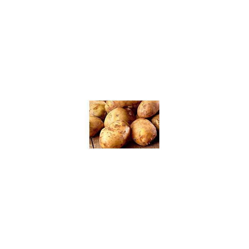 Friese geeltjes